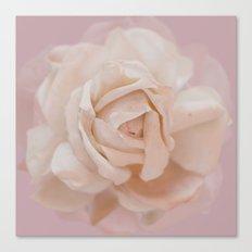 DUSKY ROSE Canvas Print