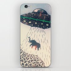 Meanwhile in Africa... iPhone & iPod Skin