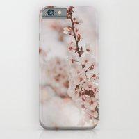 Vanilla iPhone 6 Slim Case