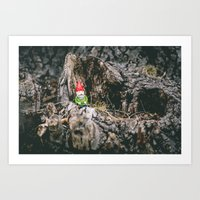 Oli The Gnome In His Sum… Art Print
