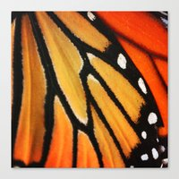 Butterfly Wing Canvas Print