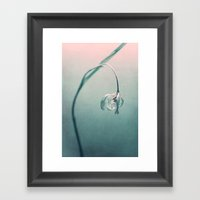 The First Tulip Framed Art Print