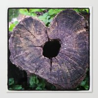 Love Stump Canvas Print