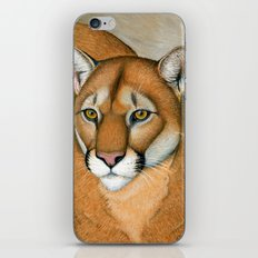 Cougar Portrait iPhone & iPod Skin