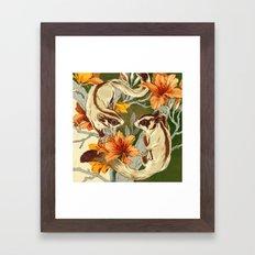 Sugar Gliders Framed Art Print