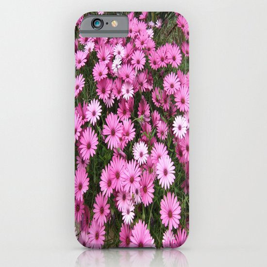 DAISIES IN PINK iPhone & iPod Case