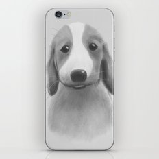 Pup. Dog portrait. iPhone & iPod Skin