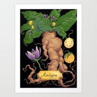 Mandrake Root Art Print