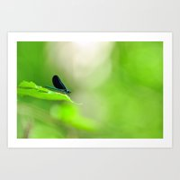 Blue Damsel And The Lime… Art Print