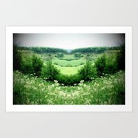 Cow Parsley Valley Art Print