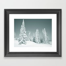 Winter Day 2 Framed Art Print