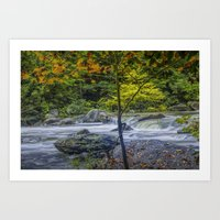 Rocky Broad River in October Art Print
