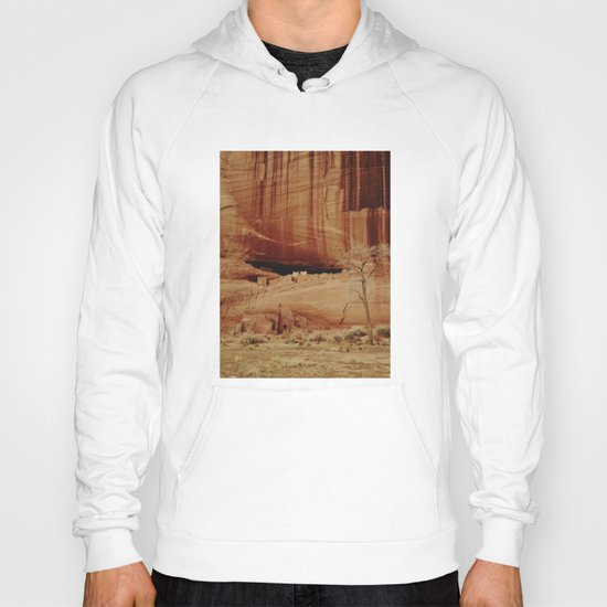 White House Ruins Hoody