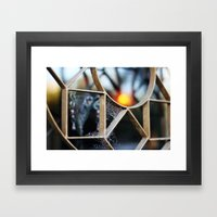 The fence, the spiderweb and the sun Framed Art Print