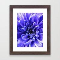 Macro Blue Framed Art Print