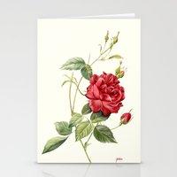 Botanical study - Rose Stationery Cards