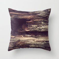 Wood Texture Throw Pillow