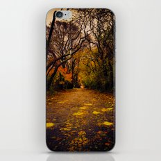Finding the Beauty in Hurricane Sandy. iPhone & iPod Skin
