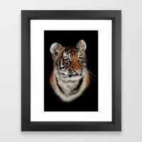 Tiger Cub Framed Art Print
