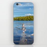 Smoke Lake iPhone & iPod Skin