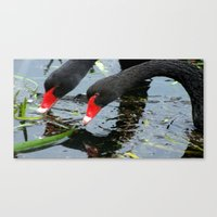 Two Peas In A Pond Canvas Print