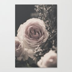 Roses and lavender Canvas Print