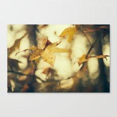 Louisiana Fall Canvas Print