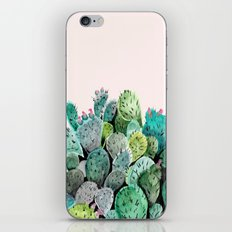Desert Princess iPhone & iPod Skin