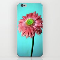 Spring Vibes iPhone & iPod Skin
