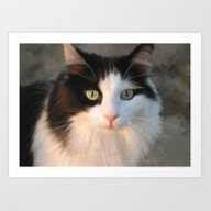 Art Print featuring Black And White Cat by Regan's World