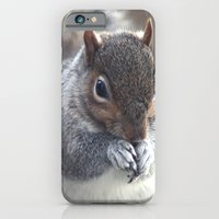 Squirrel iPhone 6 Slim Case