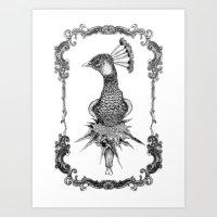 Peacock Black&white  Art Print