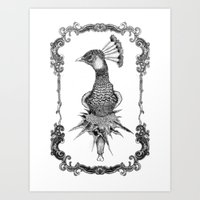 Peacock Black&white  Art Print