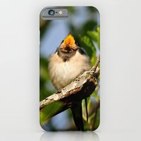 iPhone & iPod Case featuring Singing swallow by Ria Pi