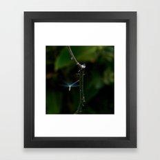 Nature Angel Framed Art Print