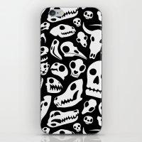Skulls iPhone & iPod Skin