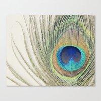 Peacock Feather No.2 Canvas Print
