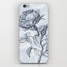 Graphic drawing roses iPhone & iPod Skin