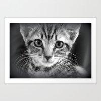 too much cuteness Art Print