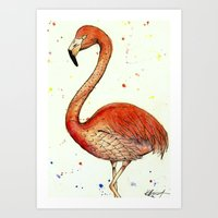 Colourful Flamingo  Art Print