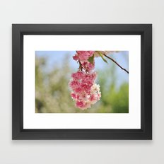 Spring Bundle Framed Art Print