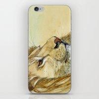 Lion - Tender Portrait 5… iPhone & iPod Skin