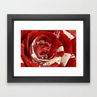 Velvet Ripple Rose Framed Art Print