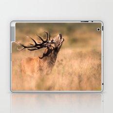 Red Deer Stag Laptop & iPad Skin