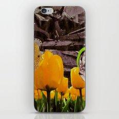 Japan  iPhone & iPod Skin