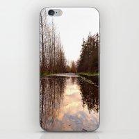 Northwest reflection iPhone & iPod Skin