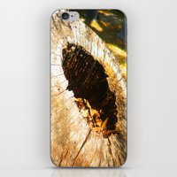 Fall Graveyard iPhone & iPod Skin