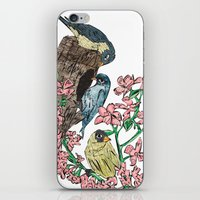 Birds With Blossom iPhone & iPod Skin