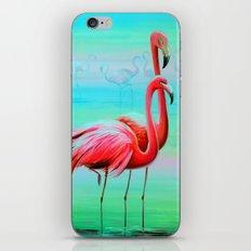 Flamingo At Dawn iPhone & iPod Skin