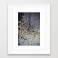 Winter Mist Framed Art Print